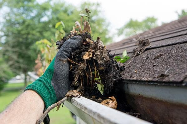 Gutter cleaning San Antonio